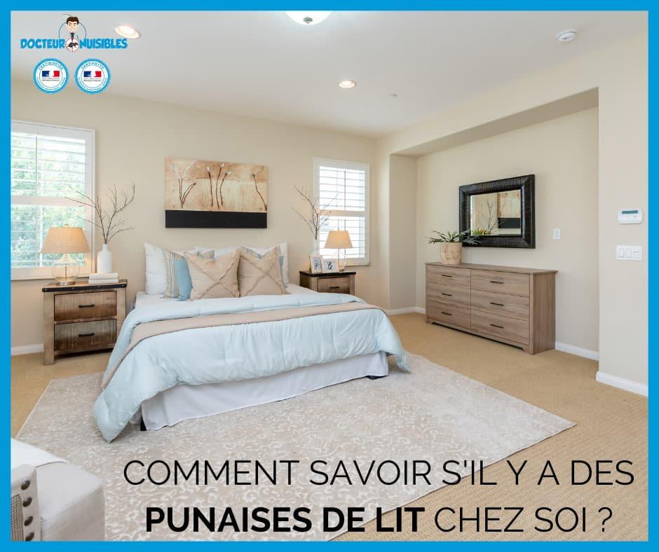Comment savoir si il y a des punaises de lit chez soi ?