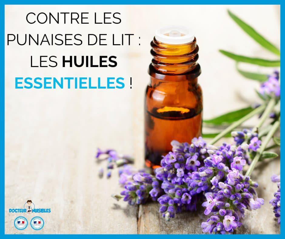 Contre les punaises de lit : Les huiles essentielles !